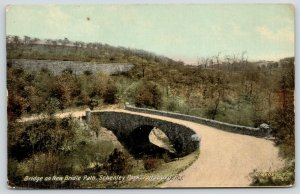 Pittsburgh PA~Schenley Park~Stone Arch Bridge on New Bridle Path~Wall Above~1912