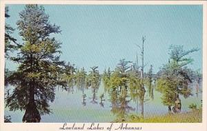 Arkansas Lowland Lakes Of Arkansas
