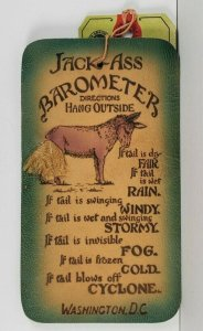 Washington DC Jackass Barometer Rope Tail Leather With Mail Tag Postcard Q3