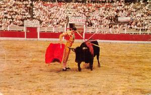 Bull Race Mexico Postcard Tarjeta Postal Corrida de Toros Bull Race