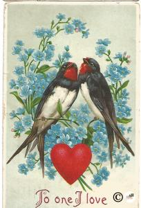 Martins on Branches of Forget Me Not Flowers Red Heart Valentine's Day Postcard