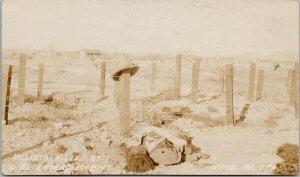 Villista Killed Agua Prieta Mexico Revolution c1915 Real Photo Postcard E73