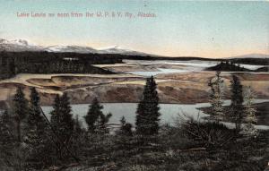 Alaska~Lake Lewis from WP&Y Railway~Pines in Foreground~c1910 Postcard