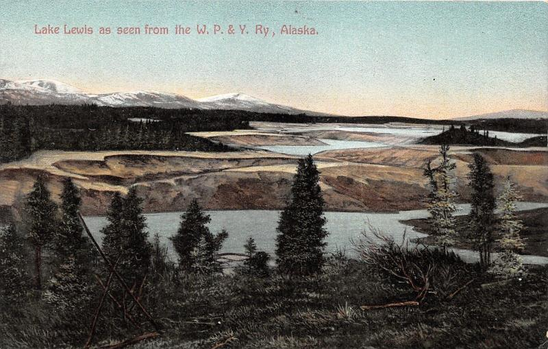 Alaska~Lake Lewis from WP&Y Railway~Pines in Foreground~c1910 Postcard