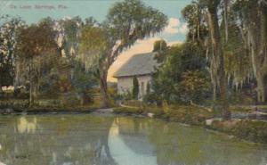 Florida DeLoeon Springs River Scene