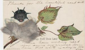 A Little Pickaninny, 1901-07; Greetings from Dixie Land