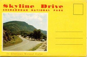 Folder - Skyline Drive, Shenandoah National Park, VA   12 views + narrative