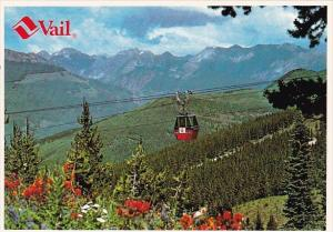 Wild Flowers And A Panoramic View Of The Gore Range Awaits Riders Of Vail's G...
