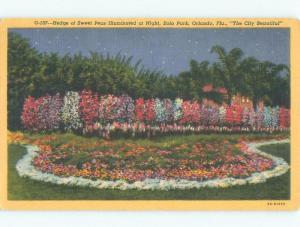 Linen PARK SCENE Orlando Florida FL c8768