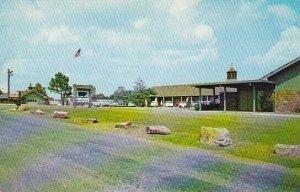 Arkansas Fayetteville Ozark Playground Series