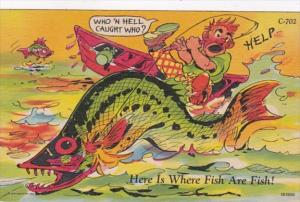 Fishing Humour Who 'N Hell Caught Who Curteich