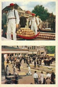 Netherlands Alkmaar cheese market dutch types postcard