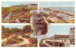 Good Luck from Folkestone East Cliff, Rock Gardens, Bathing Pool, Kitten, Cat