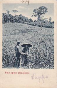 Pine Apple Plantation (Singapore) , 00-10s Straits Settlements