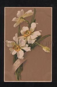 072483 NARCISSUS by C. KLEIN vintage MEISSNER & BUCH 1361 pc