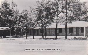 New York Orchard Park Maple Court Dexter Press