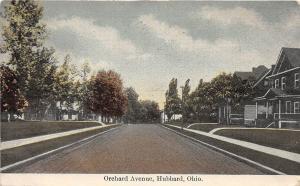 Ohio Postcard c1910 HUBBARD Trumbull County ORCHARD AVENUE Homes 1