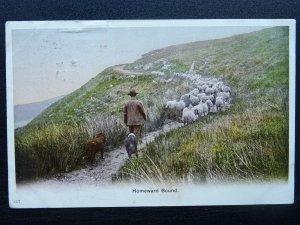 Devon Country Life (2) c1903 Postcard sent to 39 VICTORIA ROAD KENSINGTON LONDON