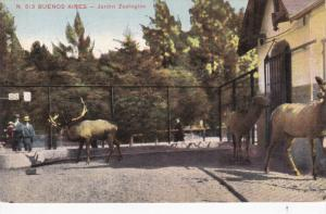 BUENOS AIRES, Argentina, 1900-1910's; Jardin Zoologico