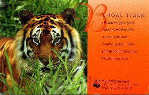 Washington D C World Wildlife Fund Bengal Tiger 1997