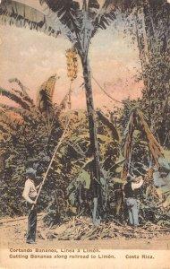 Limon Costa Rica men cutting bananas along railroad antique pc ZE686210
