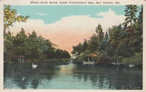 Where Duck Brook meets Frenchman's Bay - Bar Harbor, Maine - WB