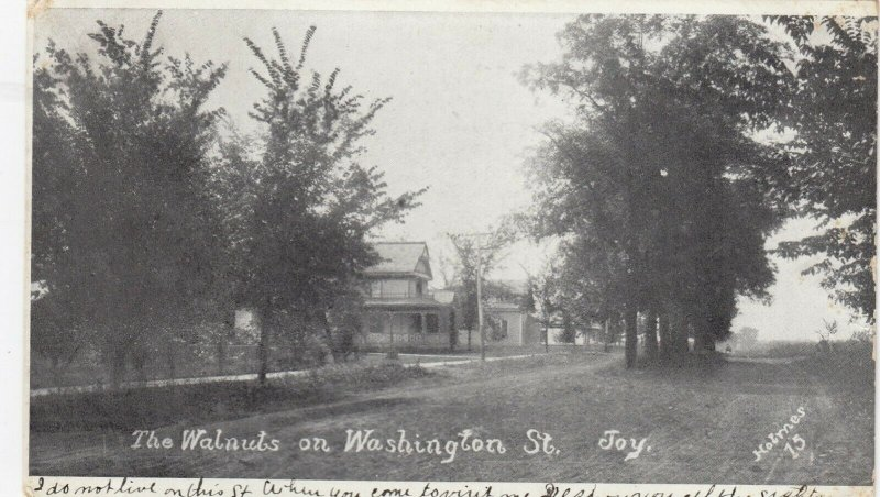 JOY , Illinois, 1908 ; Walnuts on Washington Street