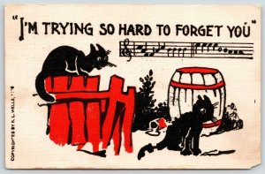 Black Cats~Red Fence~Music & Lyrics: I'm Trying so Hard to Forget You~RL Wells