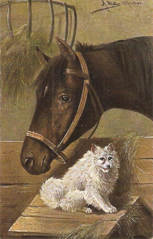 J. Muller. Horse and dog Nice old vintage English postcard