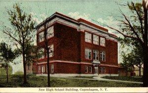 New York Copenhagen New High School Building 1914