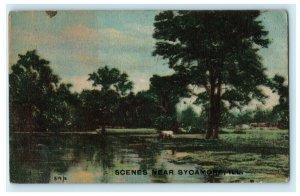 1915 Scenes Near Sycamore Illinois IL Antique Postcard