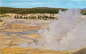 Vintage Postcard Norris Geyser Basin Yellowstone Park Basin Trail Coulter's Hell