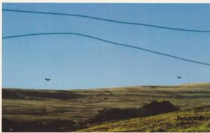 Falkland Islands  ; 1982 ;  Air Battle over San carlos