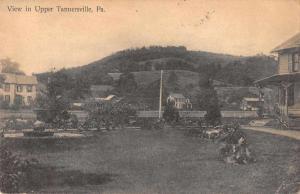 Tannersville Pennsylvania birds eye view of area antique pc Z26947