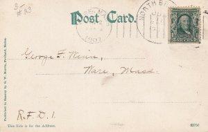 MAINE, PU-1907; Frye's Leap Rock, Sebago Lake
