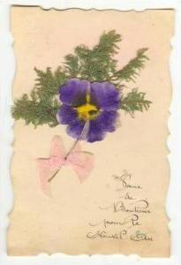 Attached Pansy flower postcard, 1927