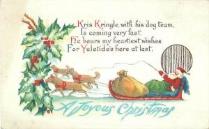 Kris Kringle with his Sled Dog Team Embossed Divided Back Christmas Postcard
