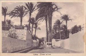 Presso Un 'Oasi, Libia, Africa, 1910-1920s