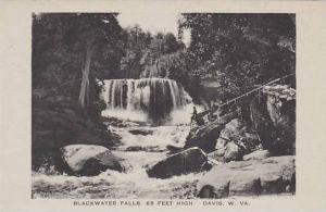 West Virginia Davis Blackwater Falls Albertype