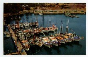 Postcard Cove Harbor Boats Fishing Depoe Bay Oregon Standard View Card