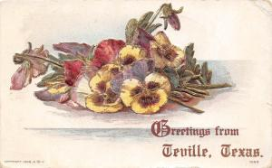 D50/ Teville Texas Tx Postcard 1912 Greetings from Teville Texas