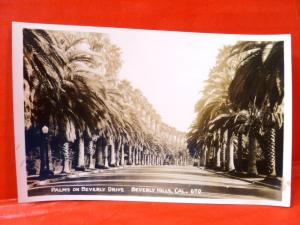 Postcard CA Beverly Hills Palms on Beverly Drive 1920's RPPC Real Photo