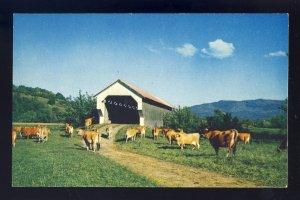 Cambridge, Vermont/VT Postcard, Wooden Covered Bridge On E. Gates Farm