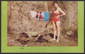 Woman In Swimsuit Postcard