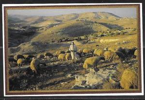 Israel, Shepherd's Field near Bethlehem, unused