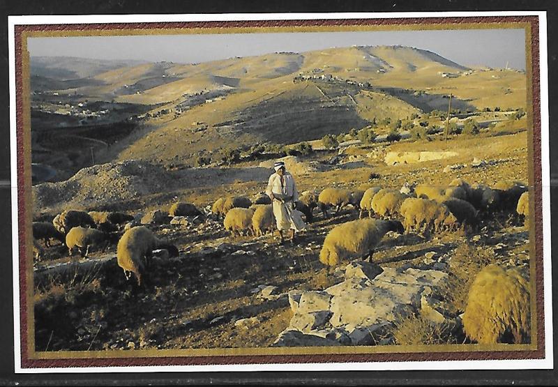 Israel, Shepherd's Field near Bethlehem, unused
