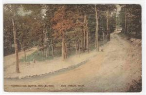 Horseshoe Curve Boulevard Ann Arbor Michigan handcolored 1915 postcard