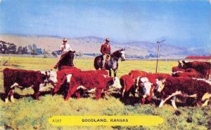 Goodland Kansas~Cowboys Round Up Cows~1950s Rembrant Postcard