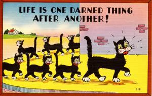 Humor - Life is one darned thing after another (Cats)