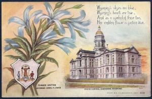 State Capitol & Flower Cheyenne Wyoming unused c1908